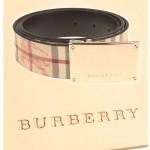 burbelt-3741142-p